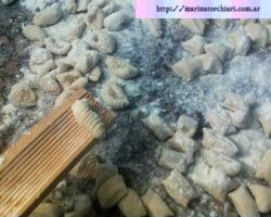 receta de gnocchi de papas