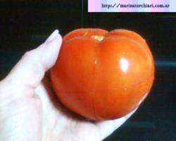 Como pelar tomates