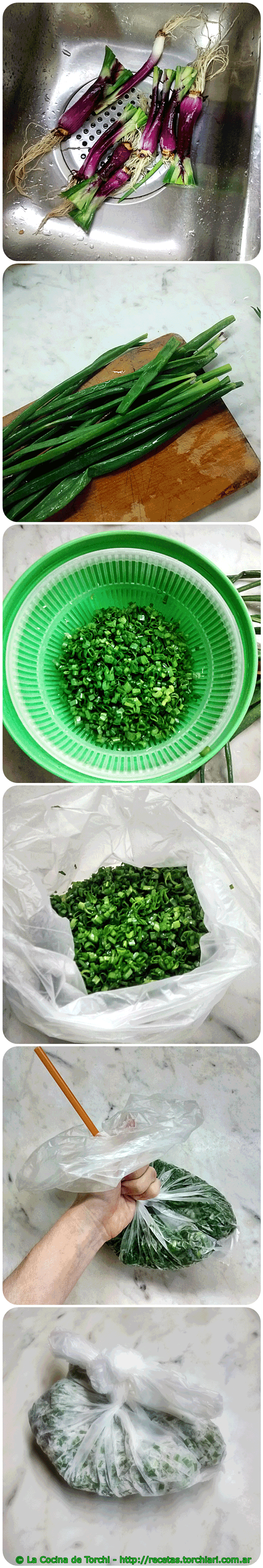 Cebolla de verdeo freezer